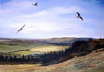 Red Kites At Coombe Hill Print by Barry BLAKE