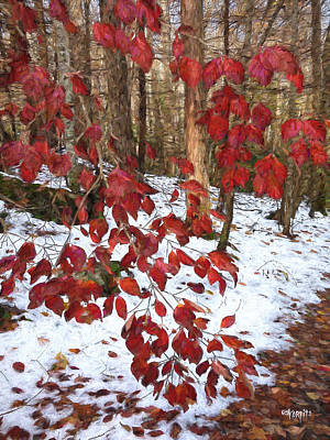 Fall Leaves Photograph - Red Leaves Against Snow - Fall Into Winter by Rebecca Korpita
