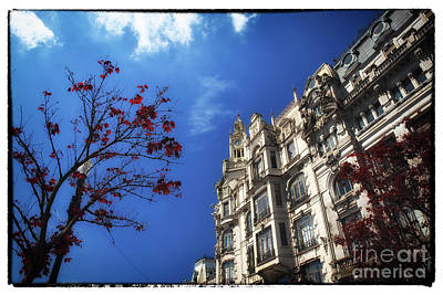 Photograph - Red Leaves In Freedom Square by John Rizzuto