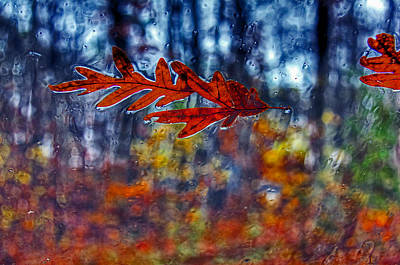 red leaves on windshield Dry Brush Art Print