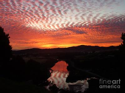 Photograph - Red Leopard Dawn by Dianne Connolly