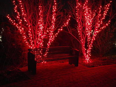 Red Lights And Bench Art Print by Rodney Lee Williams