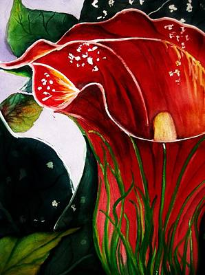 Painting - Red Lily by Lil Taylor