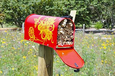 Bamboo Farm Painting - Red Mailbox by Lanjee Chee