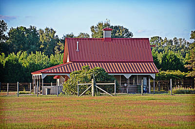 Photograph - Red Metal Roof by Linda Brown