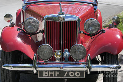 Photograph - Red Mg-td  by Terri Waters