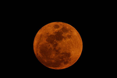 Photograph - Red Moon by Bradford Martin