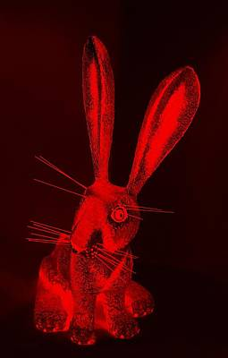 Photograph - Red New Mexico Rabbit by Rob Hans