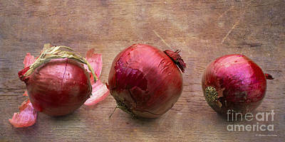 Photograph - Red Onions On Barnboard by Barbara McMahon