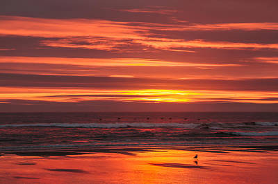 Photograph - Red  Pacific by Robert Bales