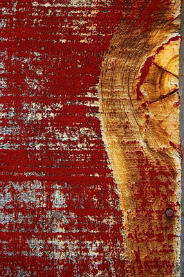 Photograph - Red Paint by Tamyra Crossley