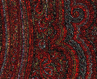 Digital Art - Red Paisley 1 by Stephanie Grant