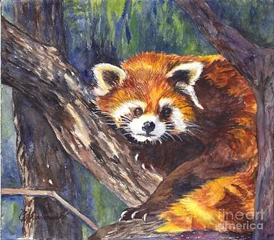 Red Panda Painting - Red Panda by Carol Wisniewski