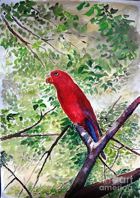 Mangrove Forest Painting - Red Parrot Of Papua by Jason Sentuf