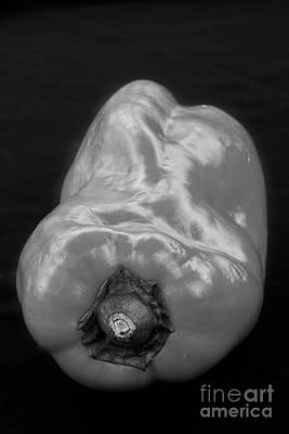 Photograph - Red Pepper Bringing Sexy Back Black And White by James BO Insogna
