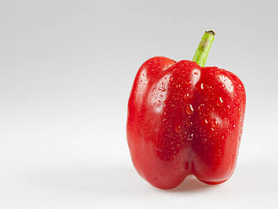 Photograph - Red Pepper by John Crothers