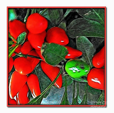 Photograph - Red Pepper Plant by Joan  Minchak