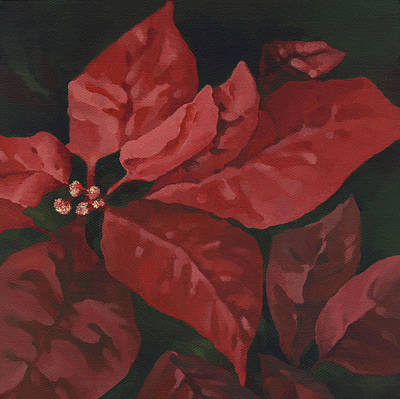 Painting - Red Poinsettia by Natasha Denger