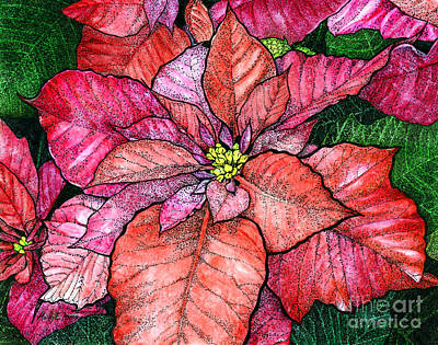Ink Painting - Red Poinsettias II by Hailey E Herrera