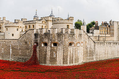 Palace Of The Normans Photograph - Red Poppies In The Moat Of The Tower Of London by Twilight View