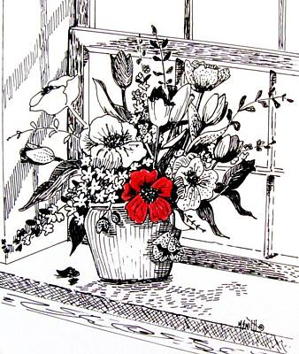 Poppies Drawing - Red Poppy by Marilyn Smith