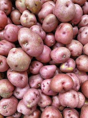 Photograph - Red Potatoes  by Patricia Januszkiewicz