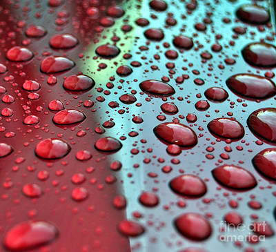 Photograph - Red Rain by Staci Bigelow
