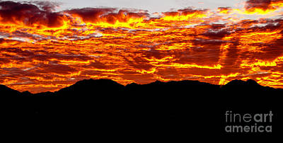 Photograph - Red Rays by Robert Bales