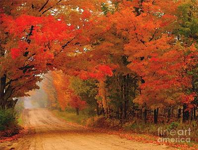 Red Red Autumn Art Print by Terri Gostola