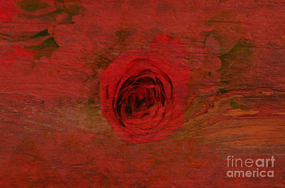 Red Red Rose Art Print by Kathleen Struckle