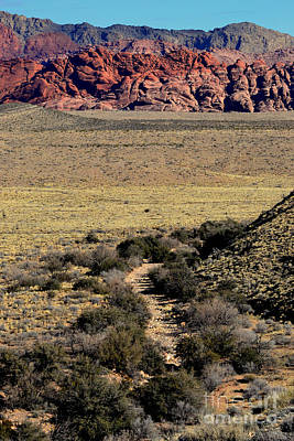 Photograph - Red Rock Canyon 11 by Diane montana Jansson