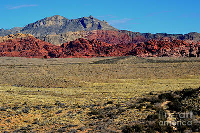 Photograph - Red Rock Canyon 12 by Diane montana Jansson