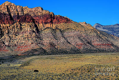 Photograph - Red Rock Canyon 16 by Diane montana Jansson