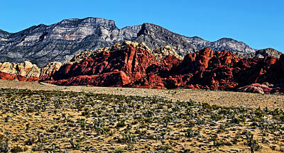 Photograph - Red Rock Canyon 2 by Judy Vincent