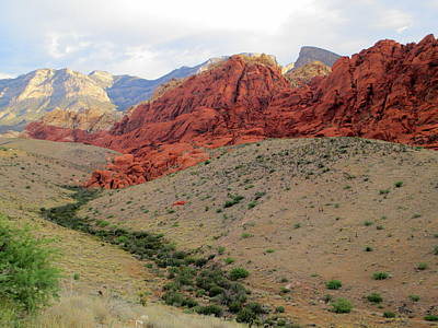 Photograph - Red  Rock Canyon 2014 Number 10 by Randall Weidner