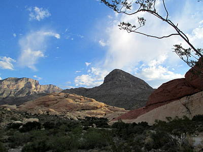 Photograph - Red Rock Canyon 2014 Number 23 by Randall Weidner