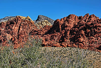 Photograph - Red Rock Canyon Layers by Judy Vincent