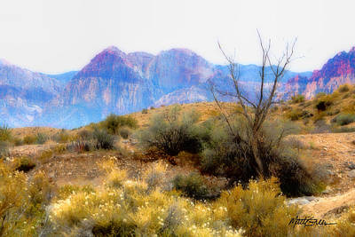 Photograph - Red Rock Canyon by Marti Green