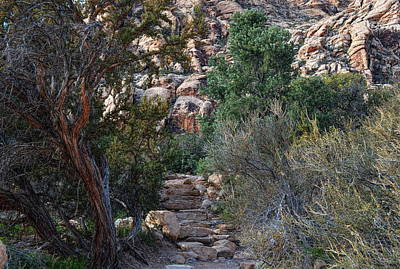 Photograph - Red Rock Canyon - Stairwell To The Gorge by Glenn McCarthy Art and Photography