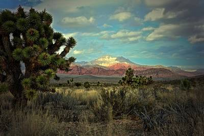 Photograph - Red Rock East by Mark Ross