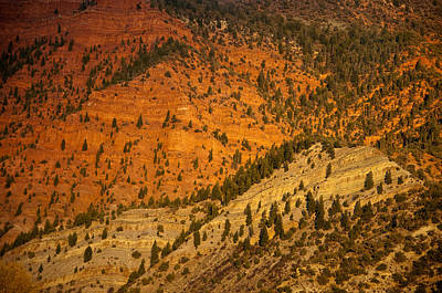 Photograph - Red Rock by Eric Rundle