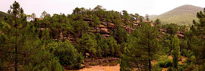 Teruel Photograph - Red Rock Green Forest No3 by Weston Westmoreland