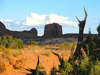 Photograph - Red Rock Landscape by John Foote