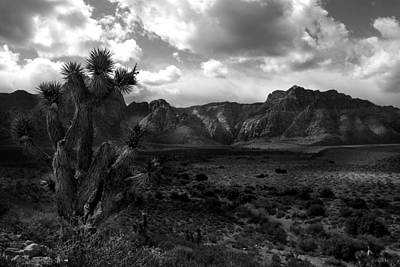 Red Rock Mountains Art Print
