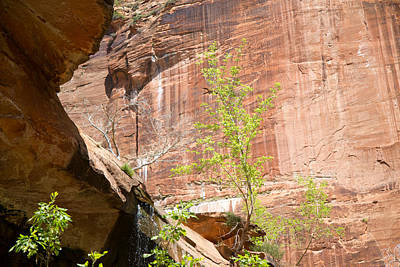 Red Rock With Waterfall Art Print