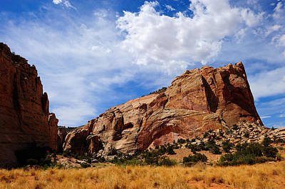 Photograph - Red Rocks by Don and Bonnie Fink