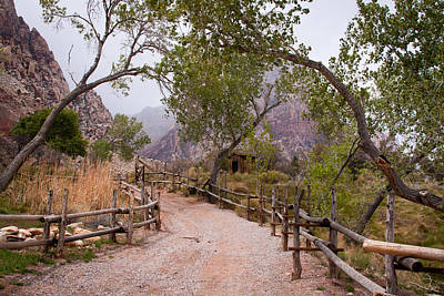 Photograph - Red Rocks Pathway by David Patterson