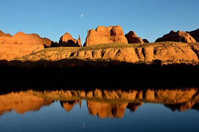Photograph - Red Rock Reflection In The Colorado River by Tranquil Light  Photography
