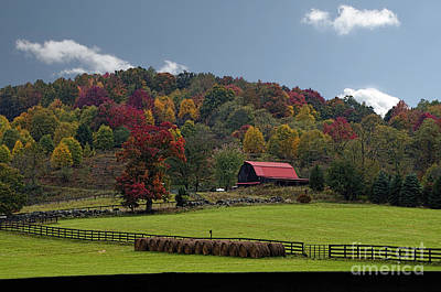 Photograph - Red Roof Barn by Dan Friend