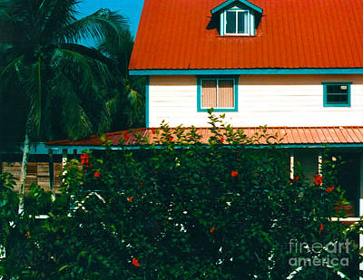 Photograph - Red Roof Home by Anita Lewis